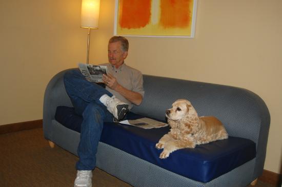 La Quinta Inn & Suites Orange County Airport: comfortable furniture