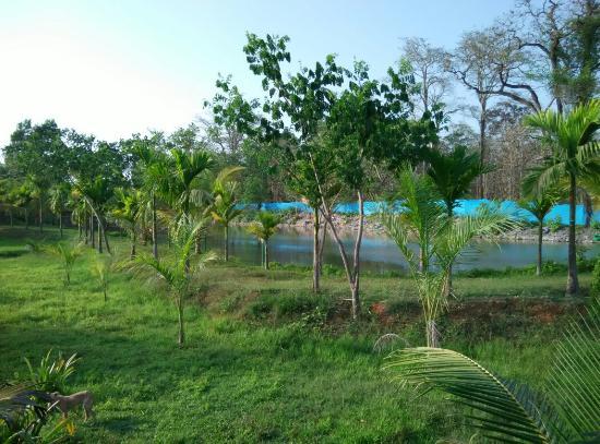 Magenta Resort