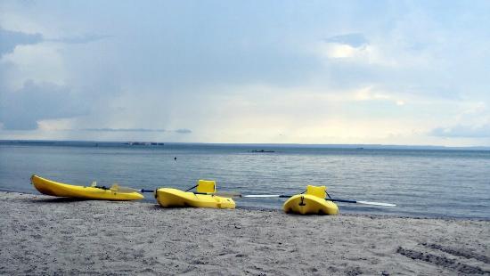 La Concha Beach Resort: playa