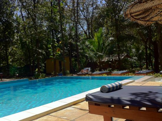 Purple Valley Yoga Retreat : piscina, sempre limpinha
