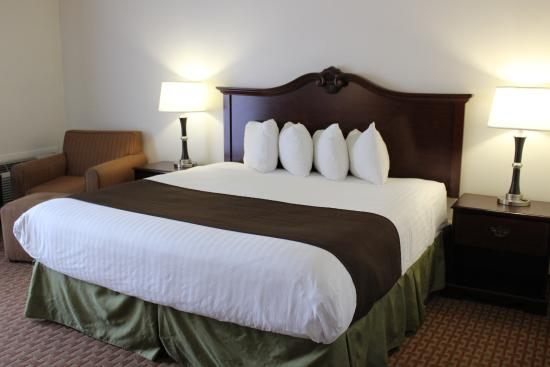 Best Western Chieftain Inn: Single King Room