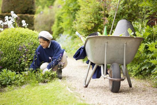 Mapperton Gardens: Endless weeding!
