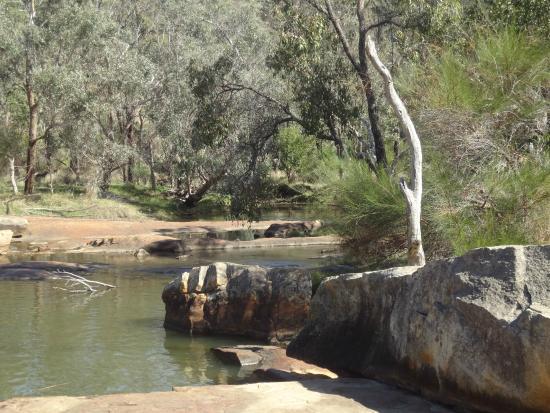 Gidgegannup, Austrália: Beautiful view from Tavern