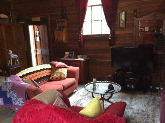 St. Paul's Bed and Breakfast: Lounges and TV