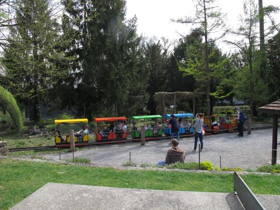 Park im Gruene