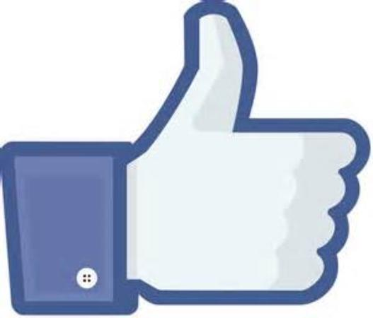 Brookhouse Farm: Like us on Facebook