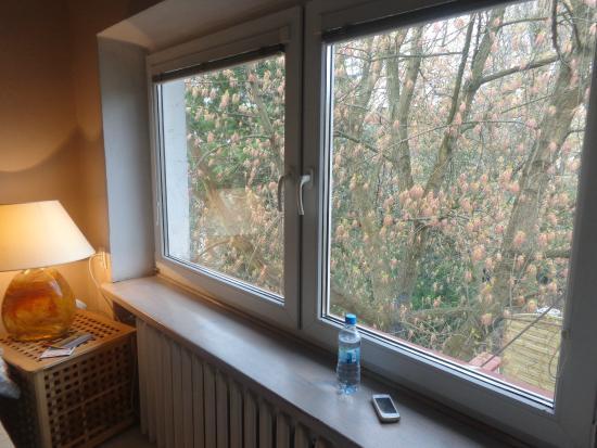 Apartamenty Galeria : window near the bed