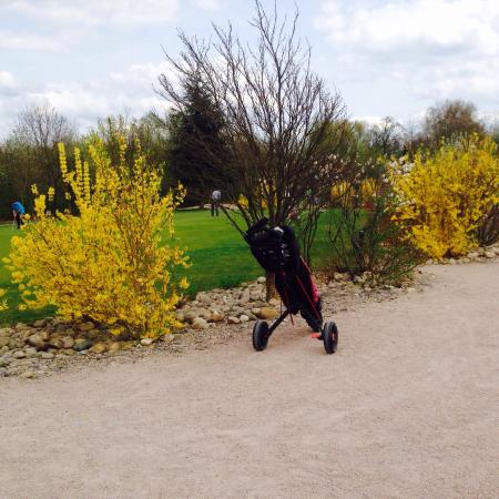 Golf Du Fort : Le printemps sourit au Fort.