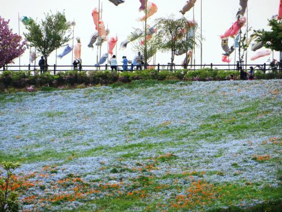 Ota City Hokubu Undo Park