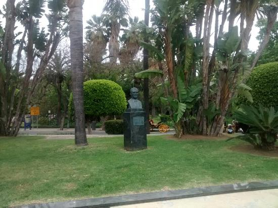 Plaza y Acera de La Marina : Estatua