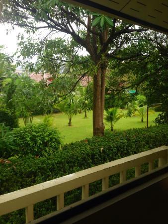 Baan Saen Sook Villas : Чюдесный вид из окон