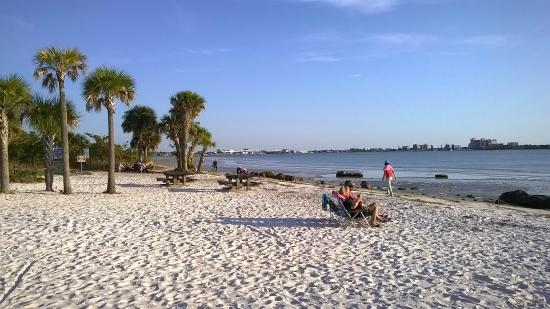 Coastal Forest Picture Of Bunche Beach Fort Myers
