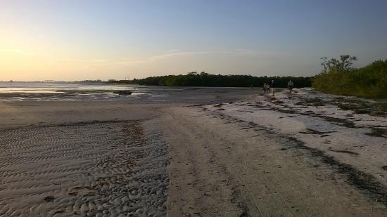 San Carlos Bay At Low Tide Picture Of Bunche Beach Fort Myers
