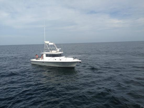 Gulf shores alabama fishing charters picture of for Fishing orange beach al