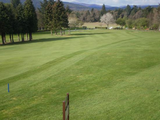Aboyne Golf Club: 1st Hole Aboye.  A draw is required from the tee