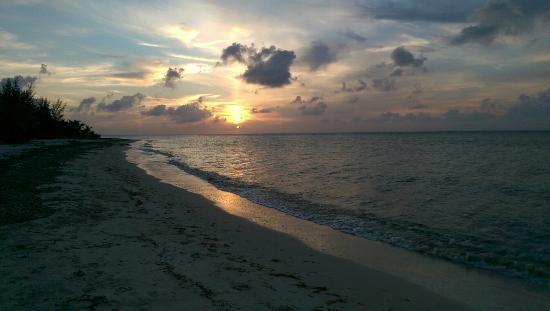 Beachouse Dive Hostel Cozumel: La plage,la plongée et la maison