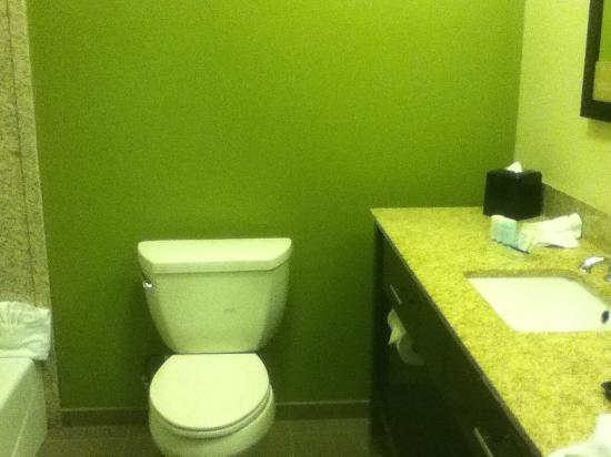 Sleep Inn & Suites Round Rock: basic, functional bathroom