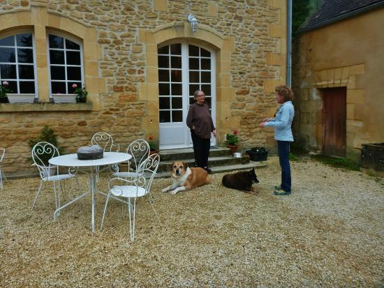 Manoir Petit Meysset: Suzette and her cute dogs