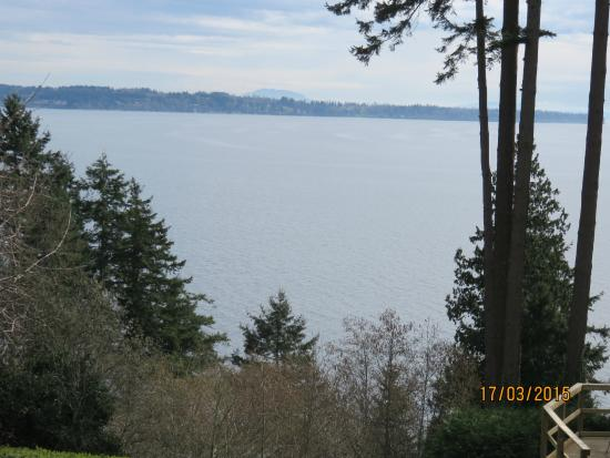 Dancing Firs Bed and Breakfast: View across the water