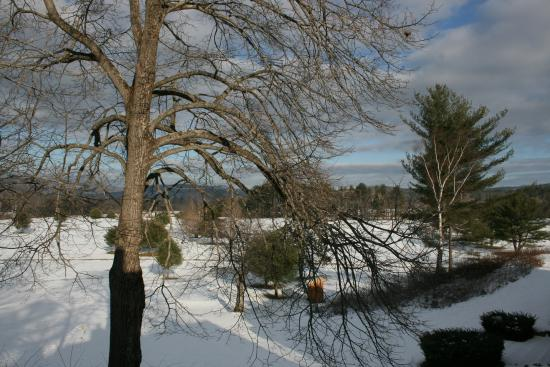 Cold Spring Resort: Winter view