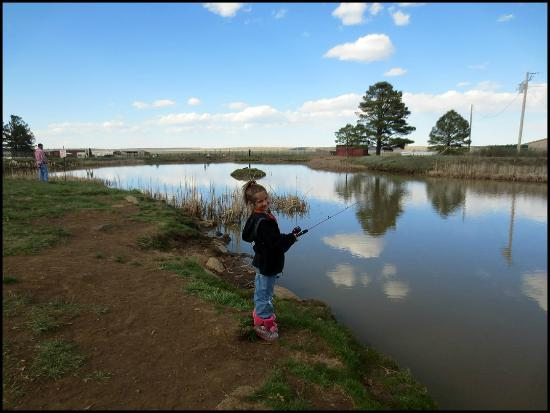 Mormon Lake Lodge and Campground : First Time FIshin'