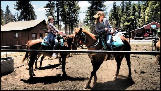 High Mountain Trail Rides: Ready to Ride