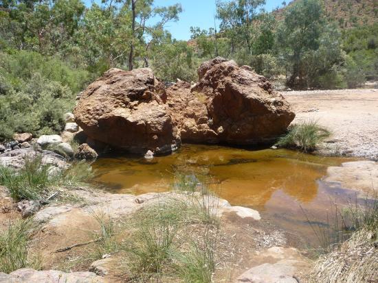 Paralana Radioactive Hot Springs: Paralana Spring
