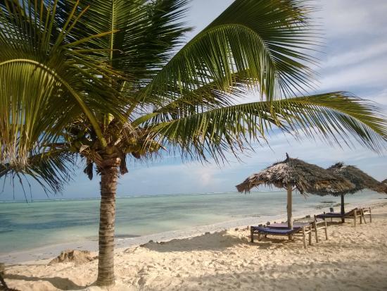 La Madrugada Beach Resort: beach