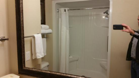 Holiday Inn Express Hotel & Suites Council Bluffs : walk-in shower