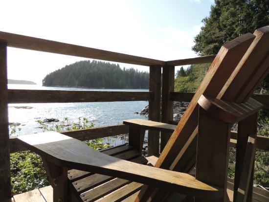 Duffin Cove Oceanfront Lodging: Vista da cabana