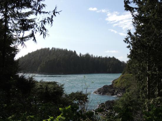 Duffin Cove Oceanfront Lodging: Vista do Hotel