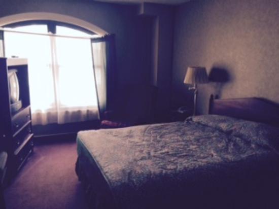 Hotel Seattle: ヨーロッパのホテルと比べるとかなりの広さがあります。