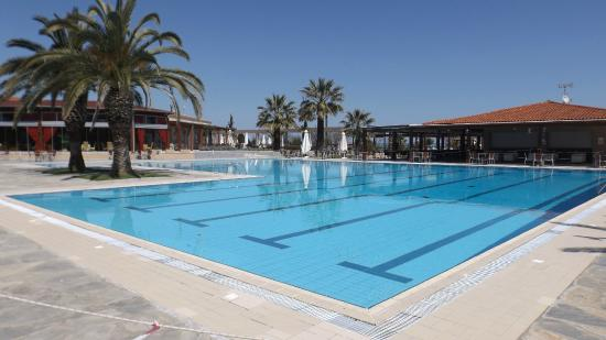 Leptokarya, กรีซ: The pool + restaurant and pool bar