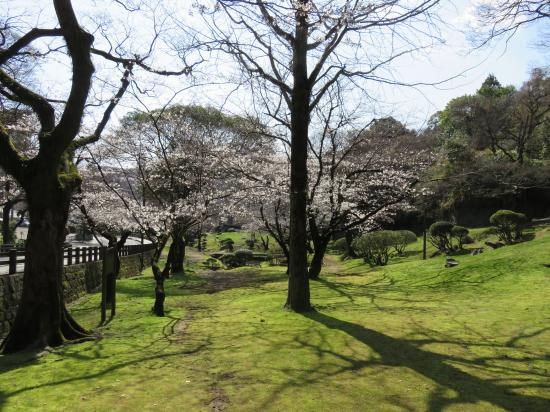 Seiso Park