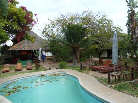 Tremisana Game Lodge: Pool area.