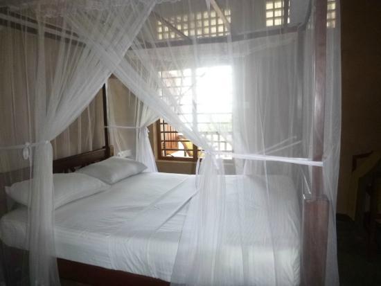 Wadiya Guesthouse : room