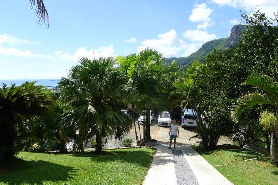 Le Sans Souci Guesthouse: Parkplatz und Auffahrt zum Essensbereich