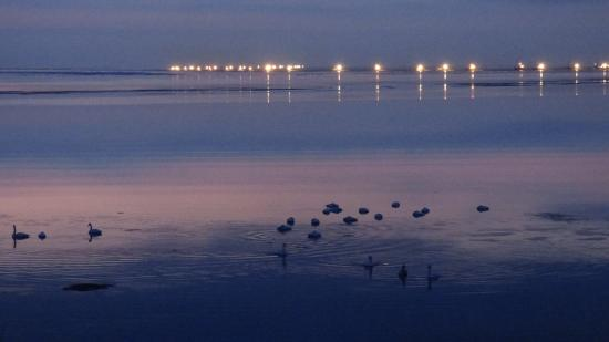 Seaside Hotel : 夜明け前の景色