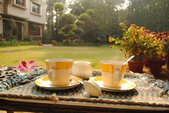 The Estate: Chai in the garden