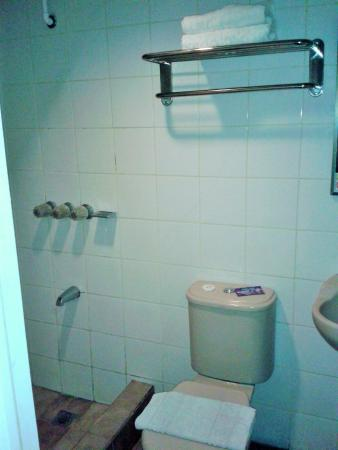 Star Plaza Hotel: The bathroom is spartan but it has hot/cold shower, towels, soap and shampoo.