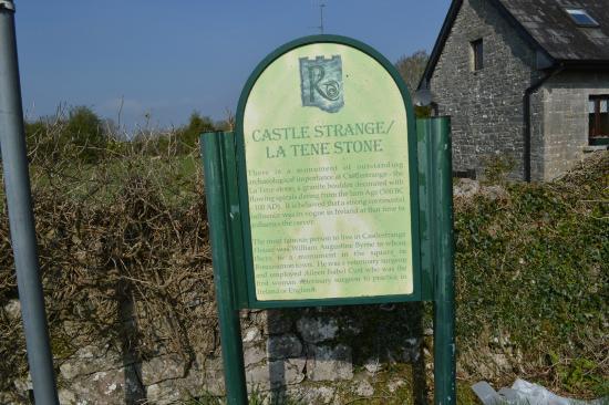 Castlestrange Scribed Stone: Description
