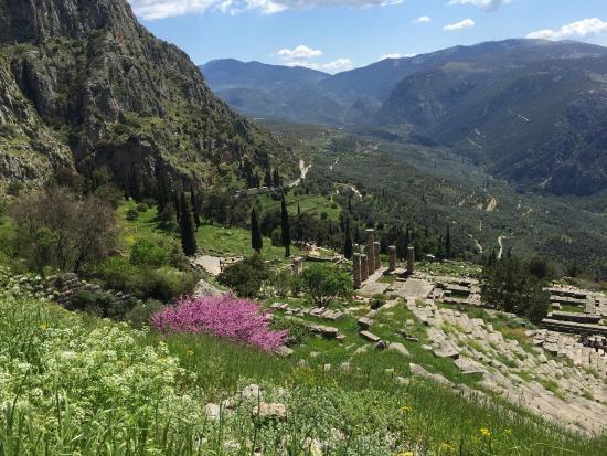 Charioteer profile - Picture of Delphi Ruins, Delphi ...