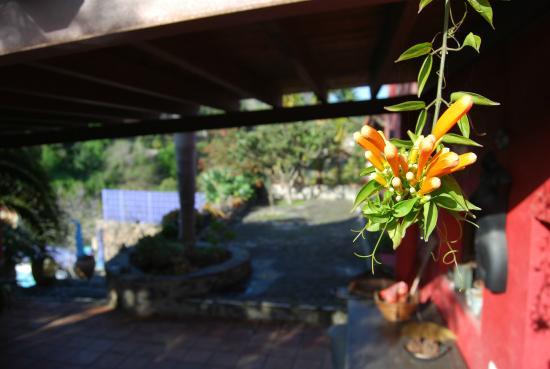Las Cadenas - La casa de campo: terraza