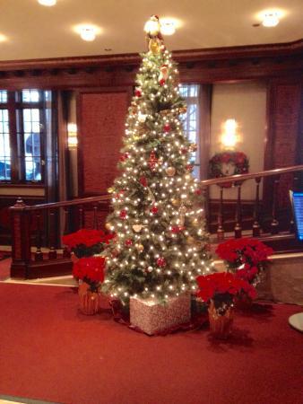 Excelsior Hotel: December 2014