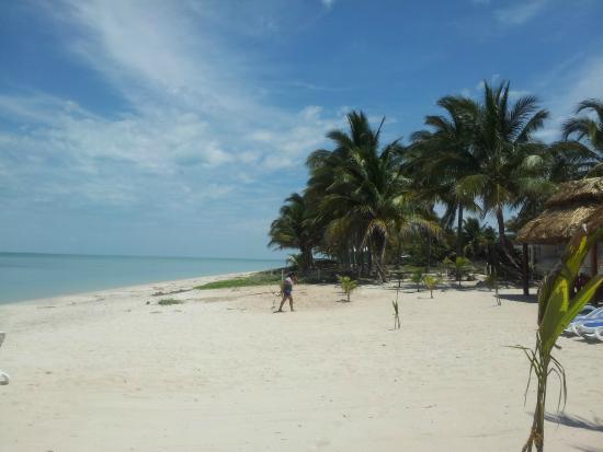 Sabancuy, Meksyk: Superbe plage, naturelle