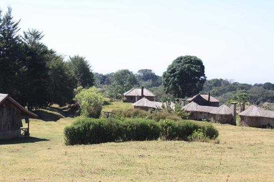 Photo of Castle Forest Lodge Mount Kenya National Park