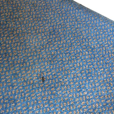 Yelf's Hotel: dirty carpet not vacuumed /cigarette burns