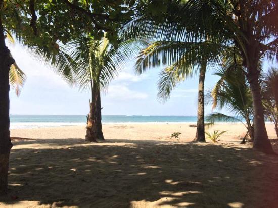 Hotel Casa Valeria Samara: frühstück am strand
