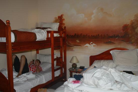 Alajuela, كوستاريكا: La chambre