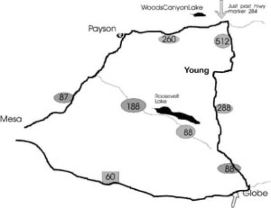 Map Of Young Arizona.Local Map Of Young Arizona Picture Of Young Arizona Tripadvisor